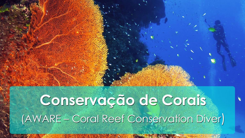 Conservação de Corais