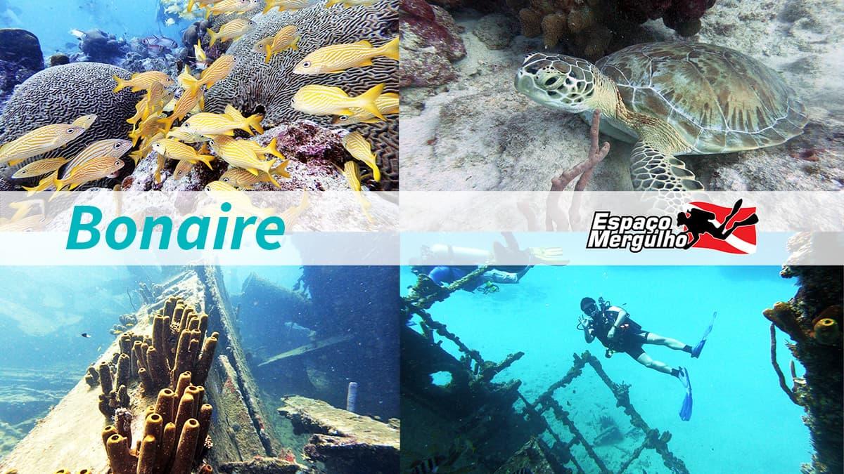 Viagem para Bonaire